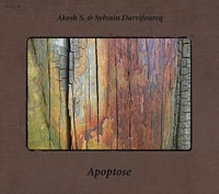 christophe marguet,daniel erdmann,together together,abalone,sylvain darrifourcq,akosh s,apoptose,meta records,jazz