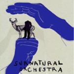 surnatural_orchestra_170.jpg