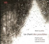 remi gaudillat, le chant des possibles, imuzzic, citizen jazz